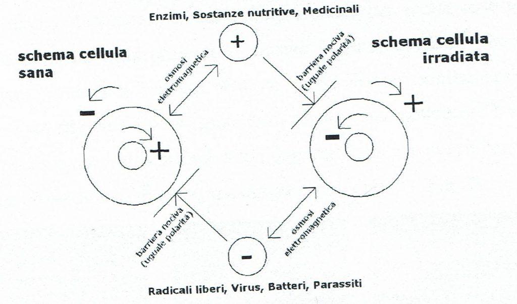 elettrosmog-geopatie danni radiazioni Biorisonanza Firenze LaboratorioAura