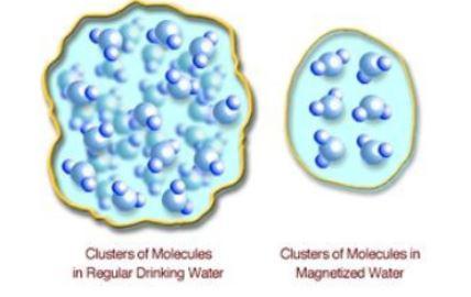 Memoria acqua coerente ionizzata informata